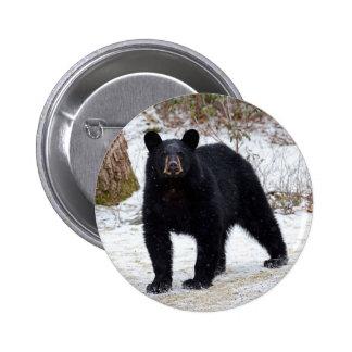 Pennsylvania Black Bear in Winter Pinback Button
