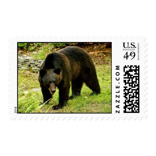 Pennsylvania Black Bear Postage
