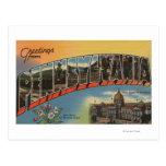 Pennsylvania (Capital del Estado/flor) Postal