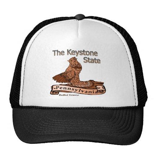 Pennsylvania el pájaro de estado trapezoidal gorros bordados