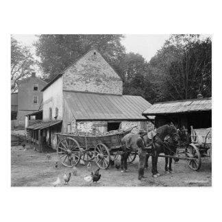 Pennsylvania Farm, 1906 Postcard