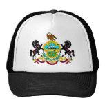 Pennsylvania Flag Theme 00 Trucker Hats