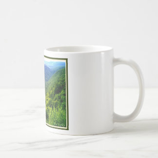 Pennsylvania Grand Canyon in summer Classic White Coffee Mug