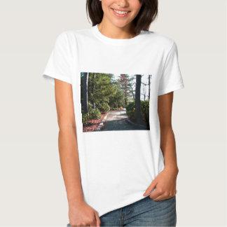 Pennsylvania Grand Canyon T-shirt