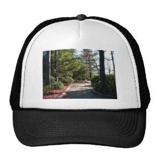 Pennsylvania Grand Canyon Trucker Hat