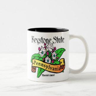 Pennsylvania Keystone State Mountain Laurel Two-Tone Coffee Mug