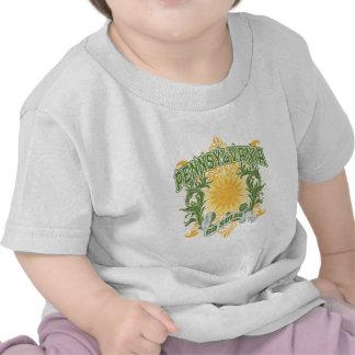Pennsylvania solar camisetas