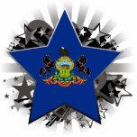 Pennsylvania Star Cut Out