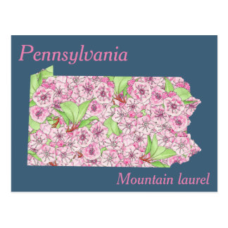 Pennsylvania State Flower Collage Map Postcard