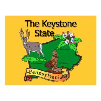 Pennsylvania The Keystone State Bird Deer Flower Postcard