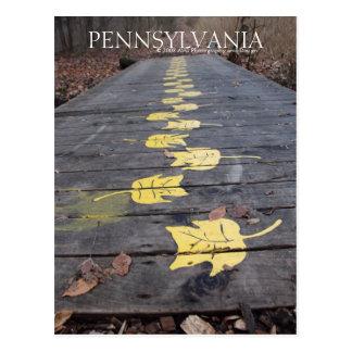 Pennsylvania Walk Through The Park Postcard