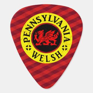 Pennsylvania Welsh American Guitar Pick