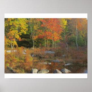 Pennsylvania Wetlands Poster