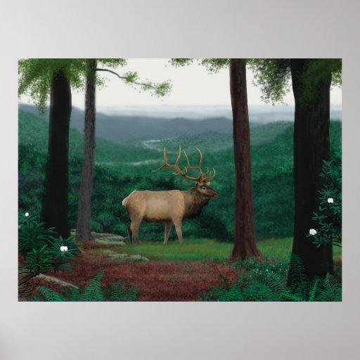 Pennsylvanian Elk Print