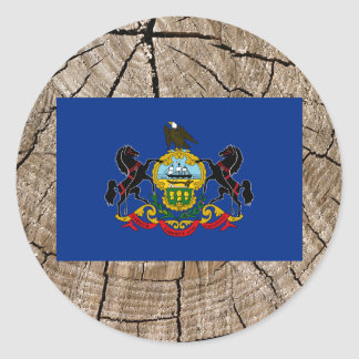 Pennsylvanian flag on tree bark classic round sticker
