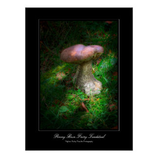 Penny Bun Fairy Toadstool gallery-style poster