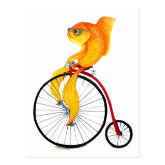 Penny Farthing Fish Postcard