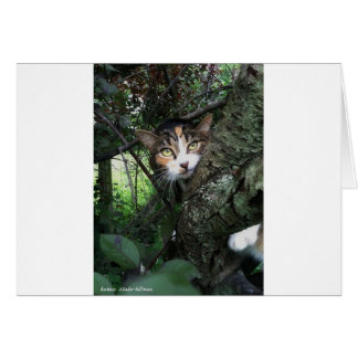 Penny in the tree card