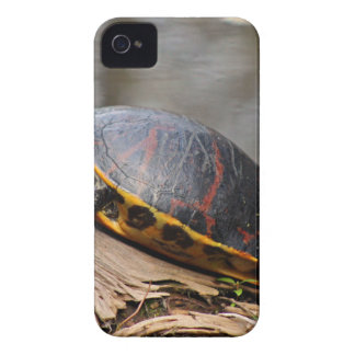 Penny iPhone 4 Case