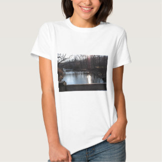 Pennypack Creek in Winter, Philadelphia, PA Tee Shirt