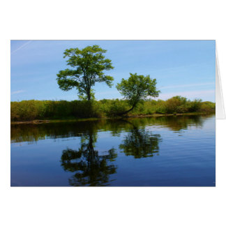 Penobscot River Reflections II Card