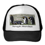 Penquin Mondays Ball Cap Hats