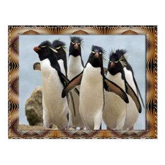 Penquin Walking Postcard