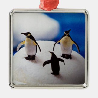 PENQUINS CELEBRATE=CHRISTMAS ORNAMENT