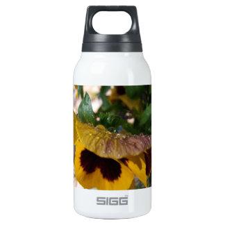 Pensamiento amarillo botella isotérmica de agua