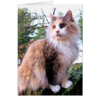 Pensamiento de encargo del gato de calicó en usted tarjeta pequeña