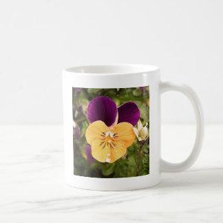 Pensamiento de la primavera taza de café