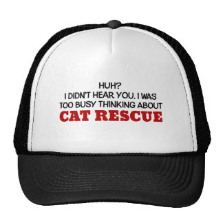 Pensamiento demasiado ocupado en rescate del gato gorra