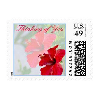 Pensamiento en usted floral timbre postal