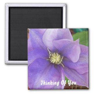 Pensamiento en usted: Imán púrpura de la flor