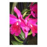 Pensamiento en usted orquídeas  papeleria de diseño