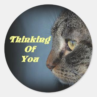 Pensamiento en usted pegatina del gato