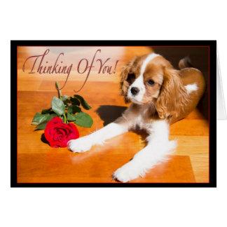 Pensamiento en usted perrito arrogante del perro d tarjeta de felicitación