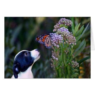 Pensamiento en usted perrito lindo adaptable tarjeta de felicitación