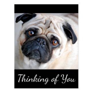 Pensamiento en usted postal del negro del perro de
