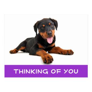 Pensamiento en usted postal del perro de perrito