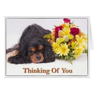 Pensamiento en usted tarjeta arrogante del perro d