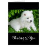Pensamiento en usted tarjeta blanca del perro de p
