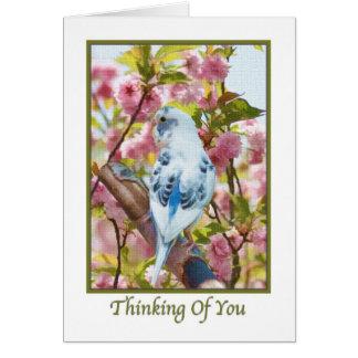 Pensamiento en usted tarjeta con el loro azul