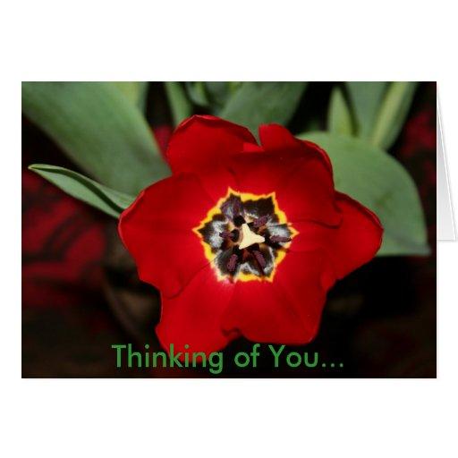 Pensamiento en usted… tarjeta de felicitación