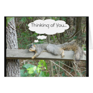 Pensamiento en usted tarjeta de la ardilla