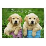 Pensamiento en usted tarjeta de los perritos del