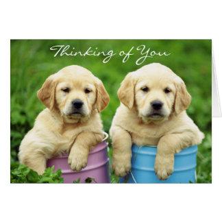 Pensamiento en usted tarjeta de los perritos del l