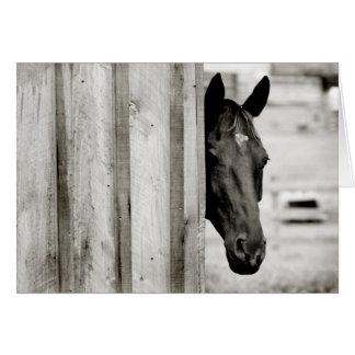 Pensamiento en usted tarjeta del caballo