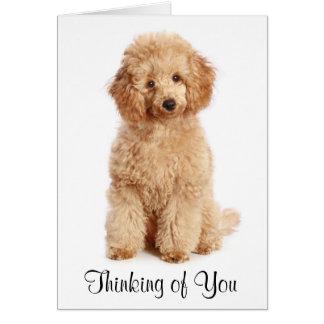 Pensamiento en usted tarjeta del perro de perrito