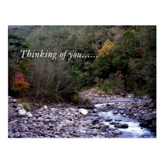 Pensamiento en usted ...... postal